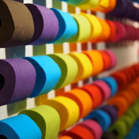 Renova - Renova Renkli Tuvalet Kağıdı Mor